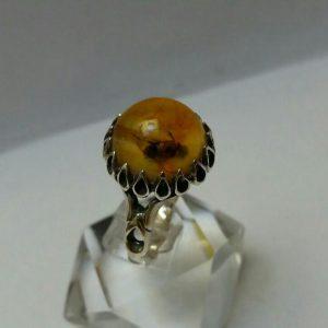 انگشتر کهربای حشره ای داخل مورچه زیبا