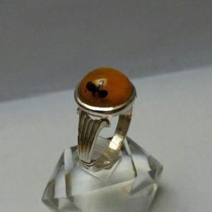 انگشترکهربای حشره ای داخل مورچه زیبا